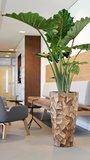 Grandis Vase Small_
